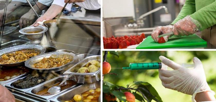 Gıda Güvenliği Ve Proses Hijyen Kriterleri